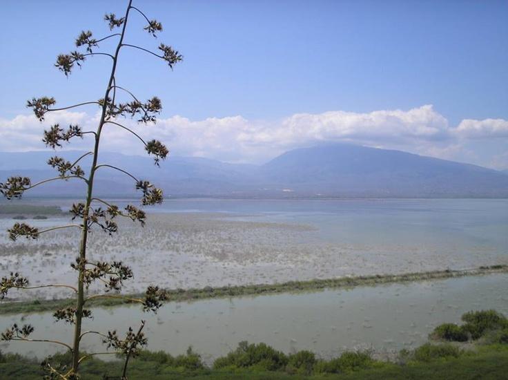 Putas cubana la laguna en Montana 989