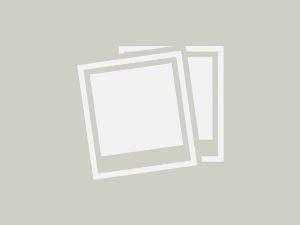Alquiler de habitaciones apartamentos estudios de lujo a chicas escorts 221