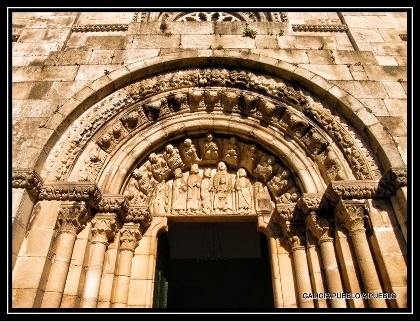 Gallegas reales en Santa Maria 7743