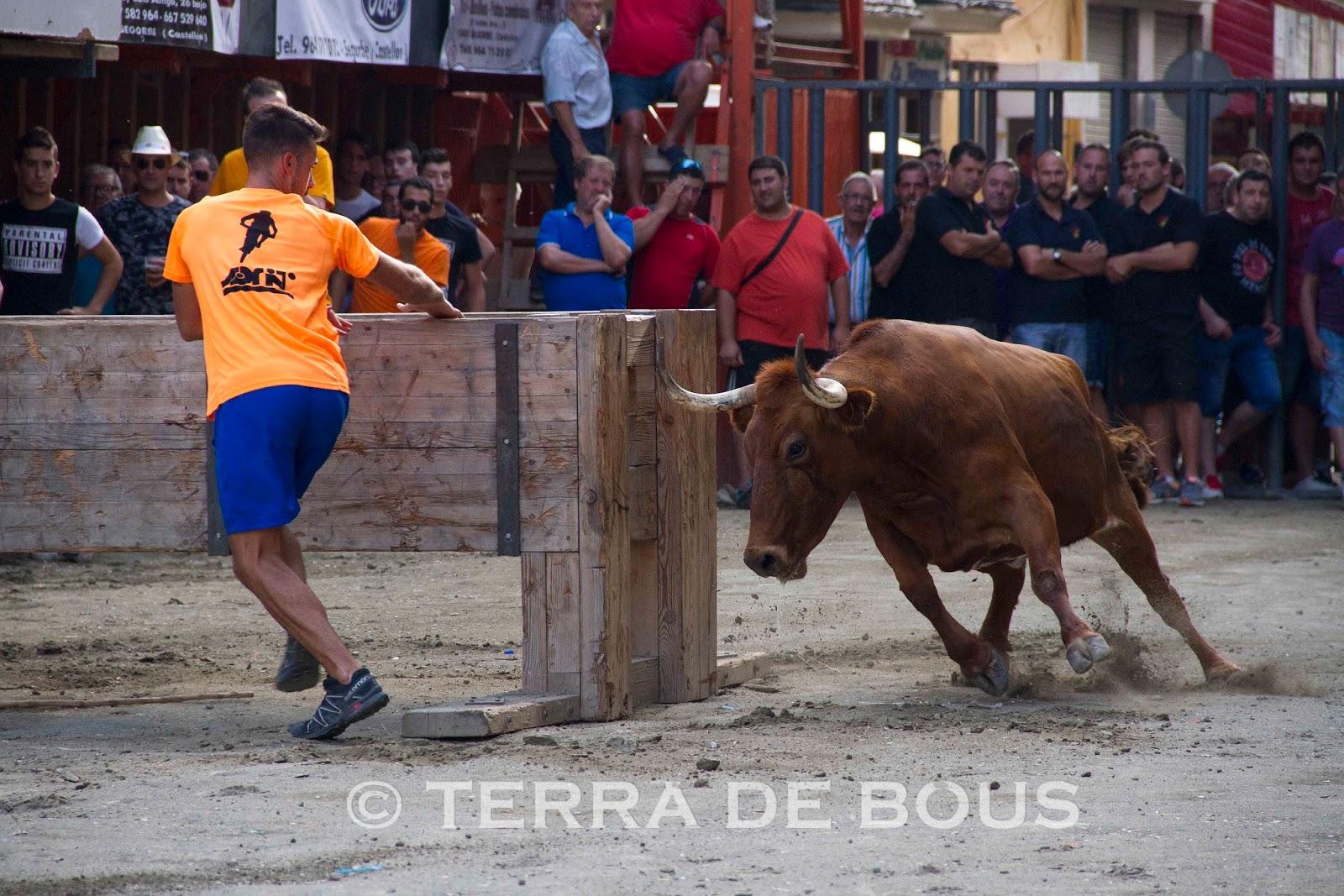 Asturianas en apuros en Tyler 9221