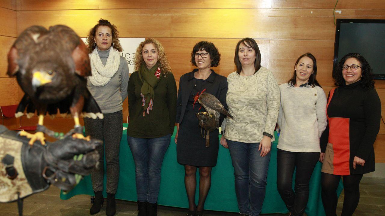 Conocer gente barbanza chicas en galicia 4313