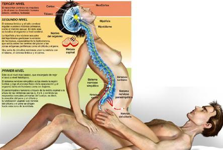 Sexo masaje de paso 423